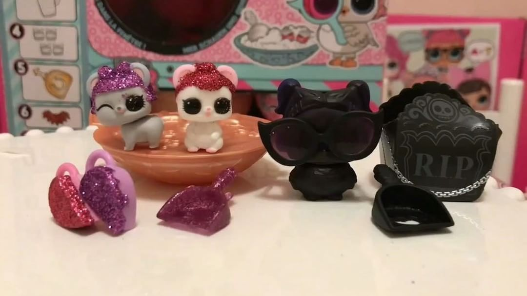 Omg Look Who We Found Today Sugar Queens Pets Sugar Squeak And Sugar Sneak From The Series 4 Pet We Are Over The Moon Because My Little Girl Really Loves Lol