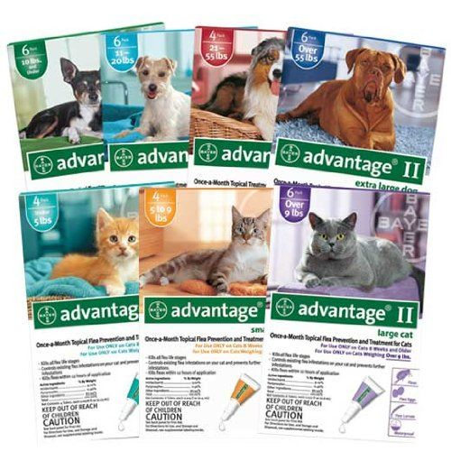 Pin on Pets Care etc