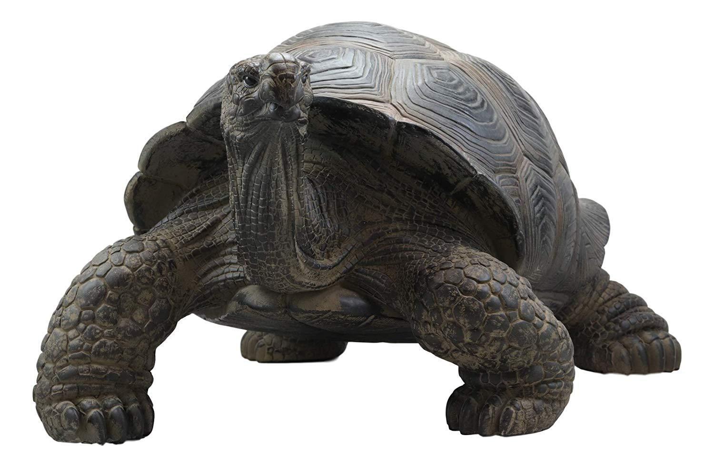 Realistic Lifelike Galapagos Giant Tortoise Statue 17 25 Wide
