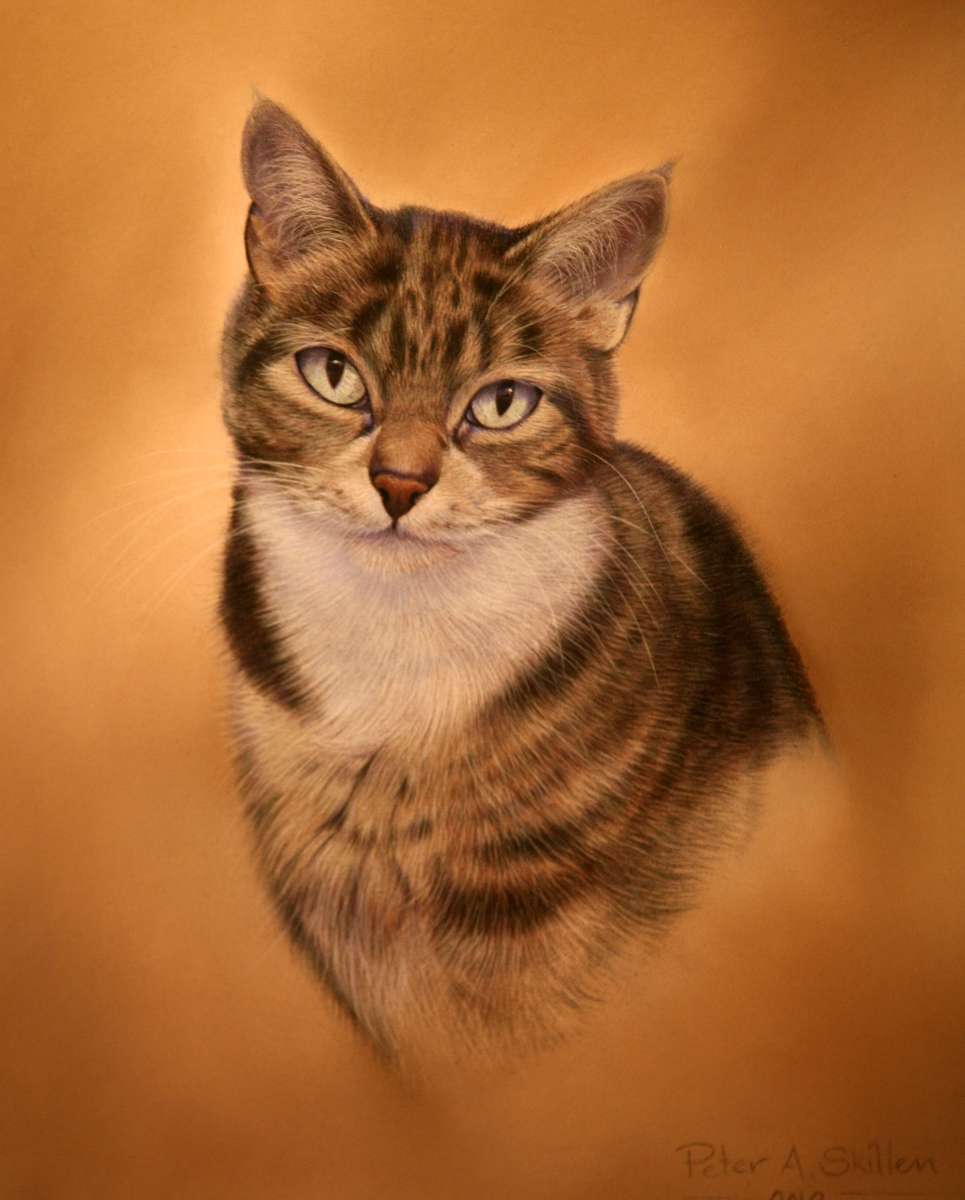Ray`s cat  Pastel painting  Sold  Commissions undertaken