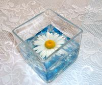 """DIY simple; we did these for a church reception event.  But YOU can pick your color palette, a simple flower, a coordinating bead color, and a square vase.  Voila.   Here we used a Shasta daisy, with blue/white beads in the base of the 4"""" square vase.  A white lace tablecloth was laid over a blue plastic cloth for background color."""