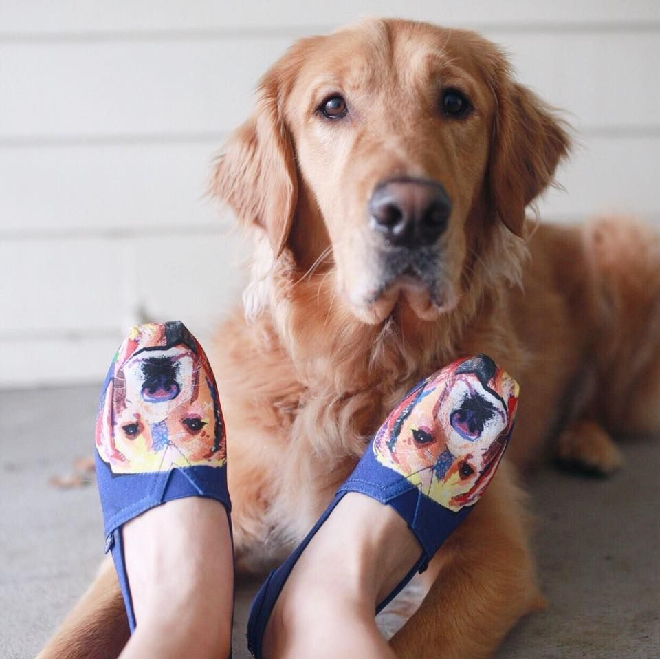 BOBS from Skechers Plush - Paw-Fection - Goldie #BOBSforDogs