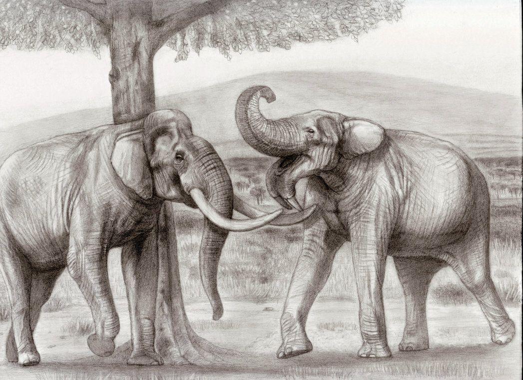 Prehistoric Safari Pliocene Eastern Africa Dieren Kleuren Kleurplaten