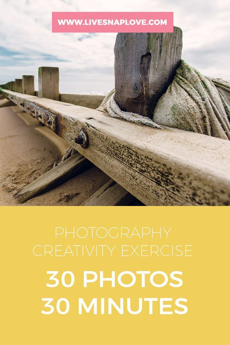 Digital Photography Book Cover ~ The book lover northrup photo