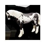 BDO] Horse Calculator - JSFiddle