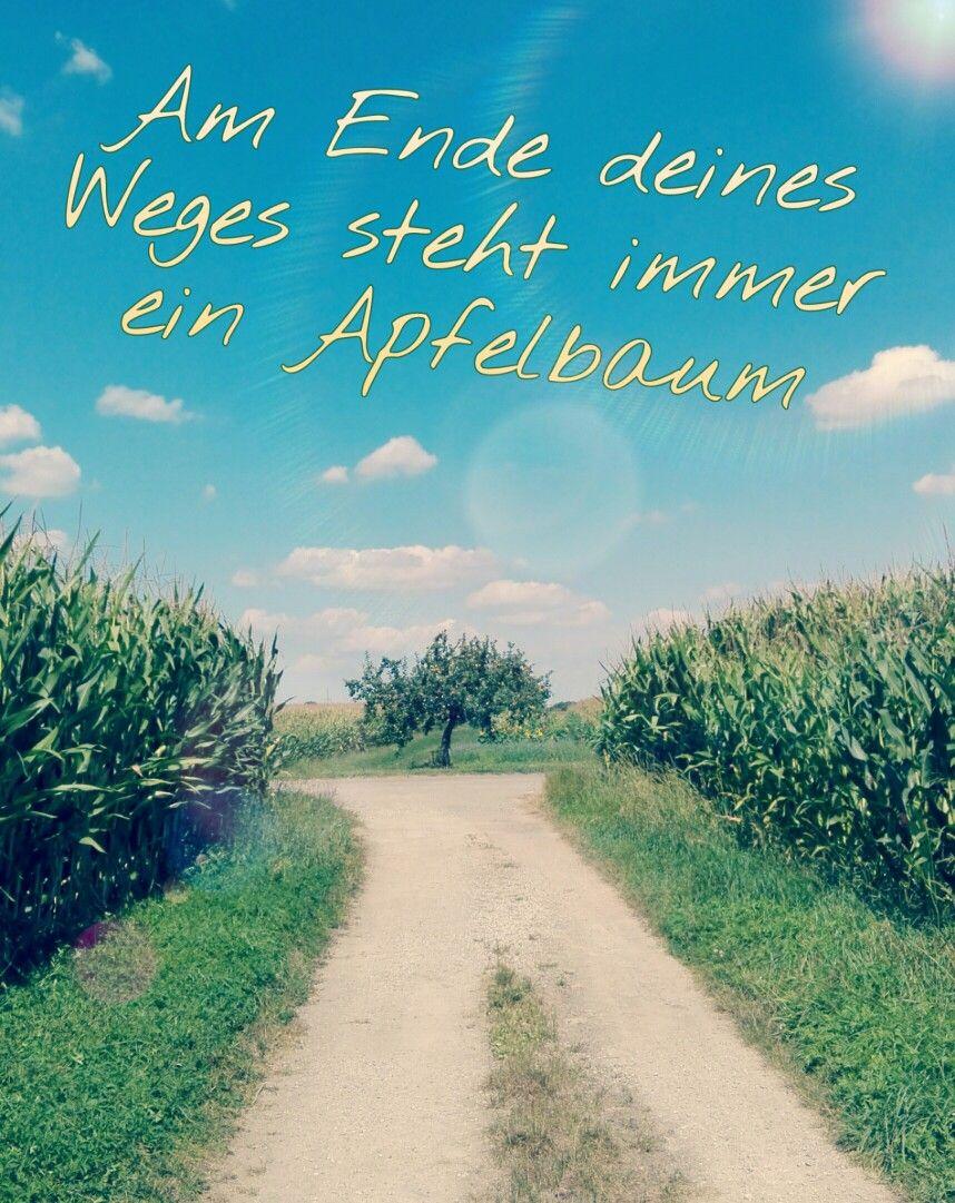 Am Ende deines Weges steht immer ein Apfelbaum | Schöne Sprüche