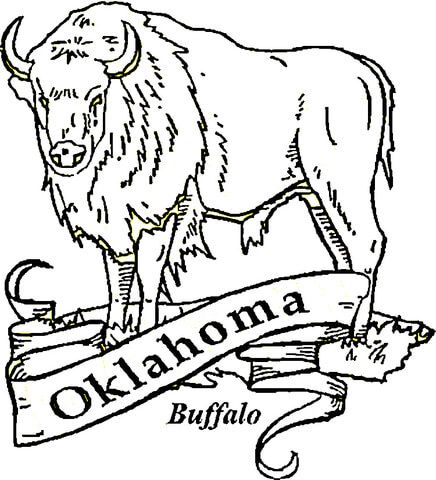 Buffalo Oklahoma Coloring Page From Oklahoma Category Select From