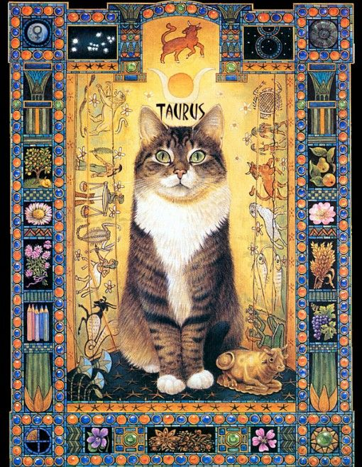 Image result for taurus kitty