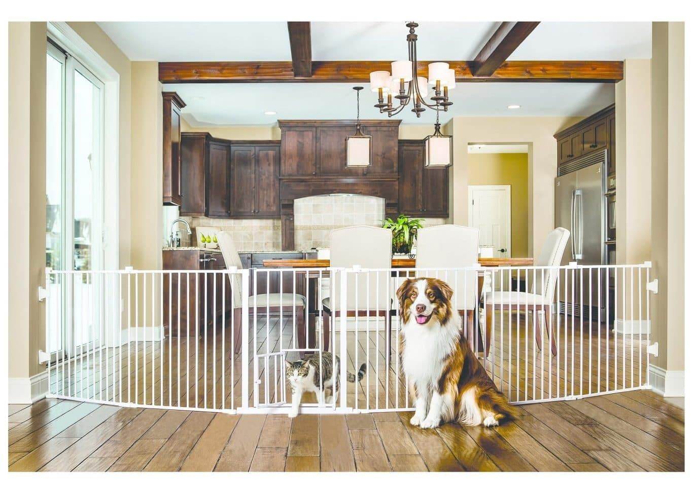 The Top 10 Cheap Dog Fences For 2019 In 2020 Invisible Fence Dogs Pet Fence Pet Gate