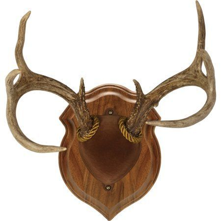Sports & Outdoors | Antler mount, Walnut hollow, Antlers