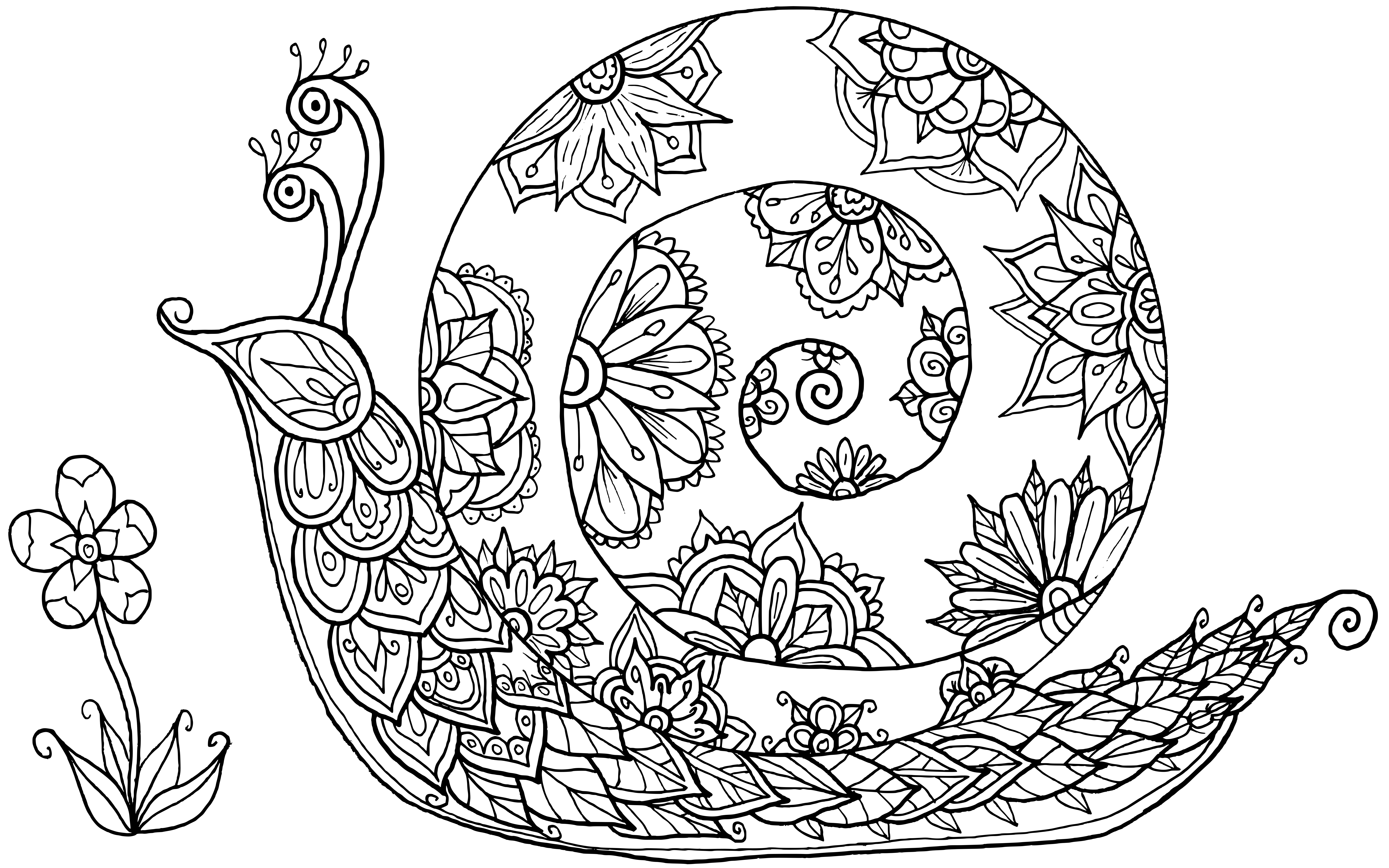 Snail Doodle by Del Angharad (WelshPixie) | Animal ...