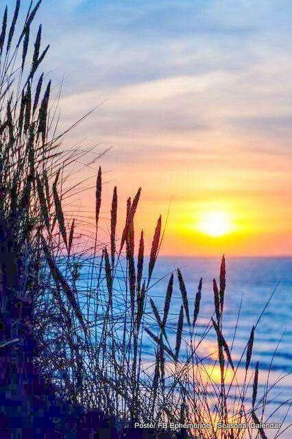 Soft Bright Near Far Sun Ocean Beach Grass Dunkerque France Landscape Paintings Watercolor Landscape Nature Photography
