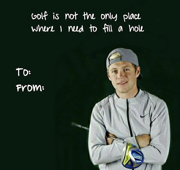 Pin By Krissylizhamil On Hi There Just Me One Direction Humor One Direction Memes Vday Cards