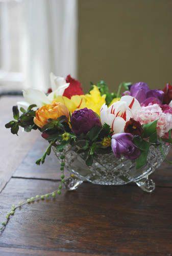 flower arrangement tulip いろいろな種類のチューリップを1輪づつ