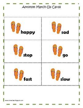 Antonyms Matching Game: Flip Flop Theme