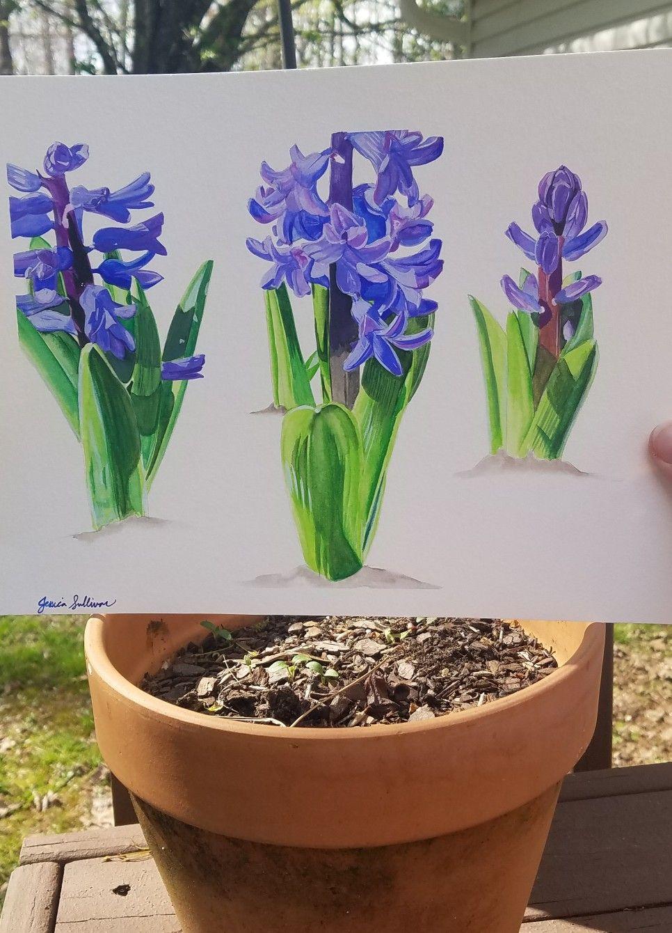 Botanical art flower painting garden art hyacinth wall