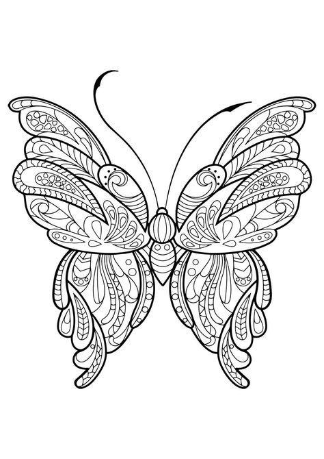 Adult Butterfly Coloring Book Adult Coloring Pages Hayvan