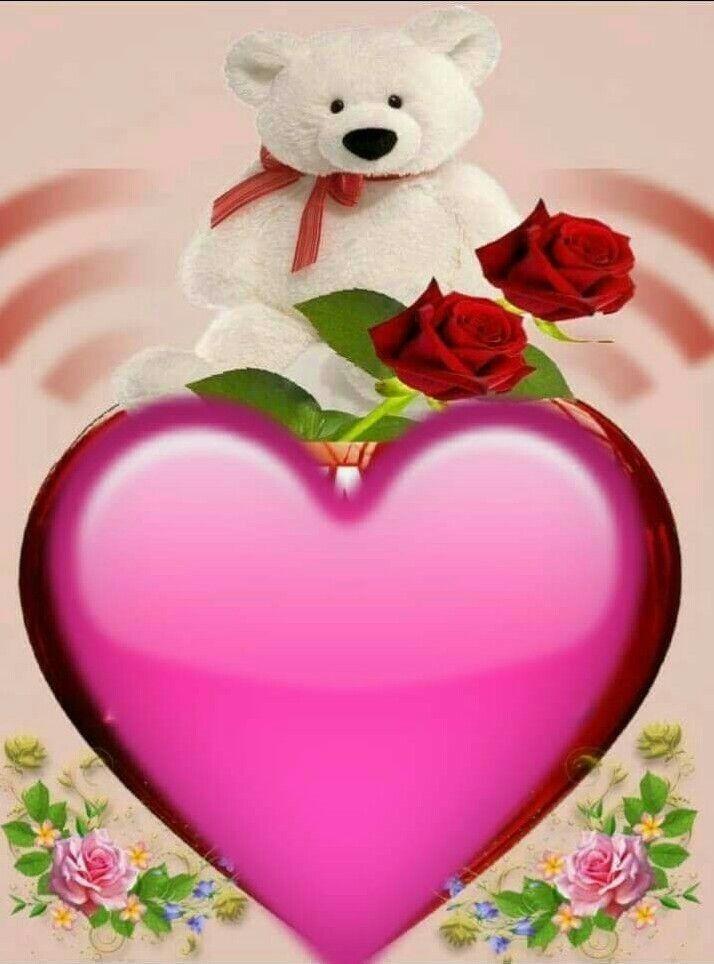 Poemas De Amor Osos Rosas Y Corazones Pin De Mary Castillo En Amor Mariposas De Colores Ositos De