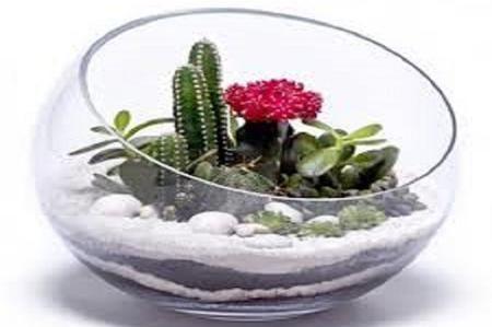 Composizione Piante Grasse In Vaso Di Vetro.Composizioni Floreali In Vaso Di Vetro Cerca Con Google