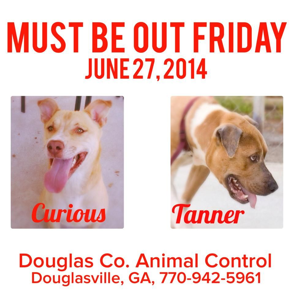 Urgent Today is Last Day Foster Share