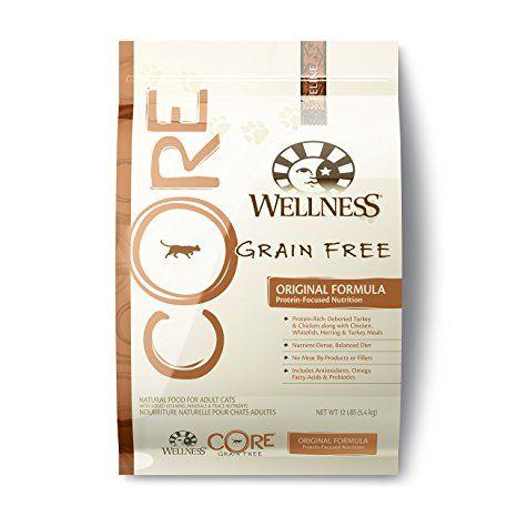Amazon Canada Dead Wellness Core Natural Dry Cat Food Original
