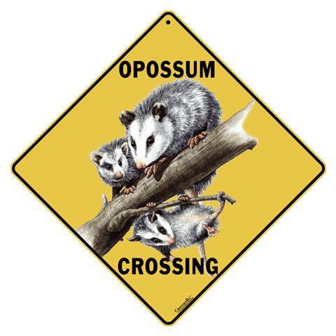 Opossum Crossing Sign   Products   Opossum, Australian