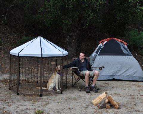 Advantek™ Pet Gazebo -- perfect to keep your pets safe ...