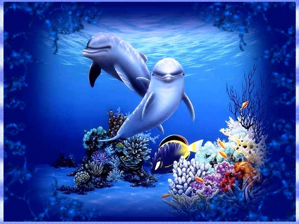 Wallpaper download free - Free Moving Dolphin Screensavers 3d Moving Wallpapers For Desktop Free Download Dostx70s