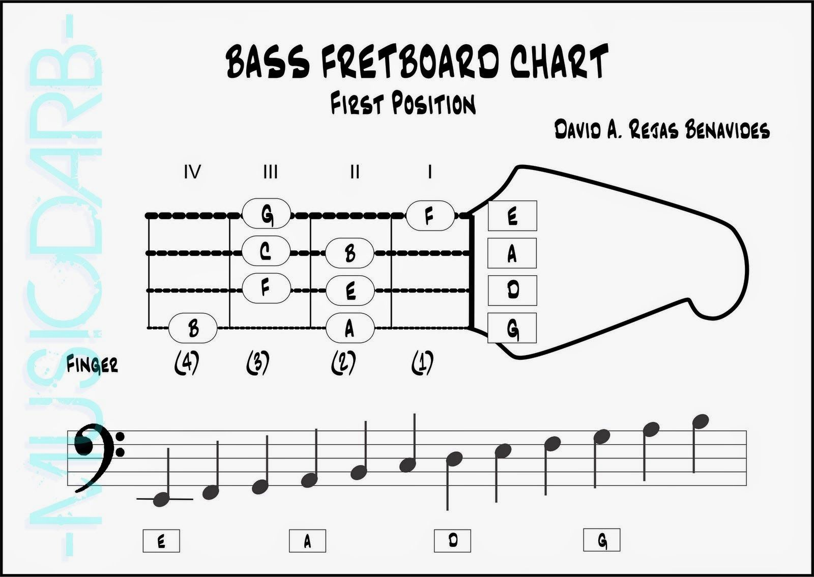 Bass Neck Diagram Dodge Ram Stereo Wiring Music Sessions Fretboard First Position