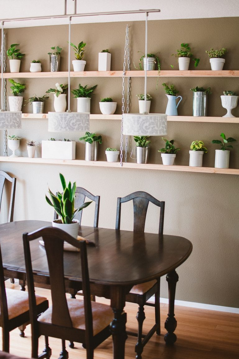 DIY Hanging Plant Shelves » Sara Adams Photography // Portland, OR |  Worldwide