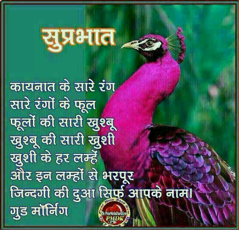 Good Morning Gujarati Hindi Special Morning Greetings