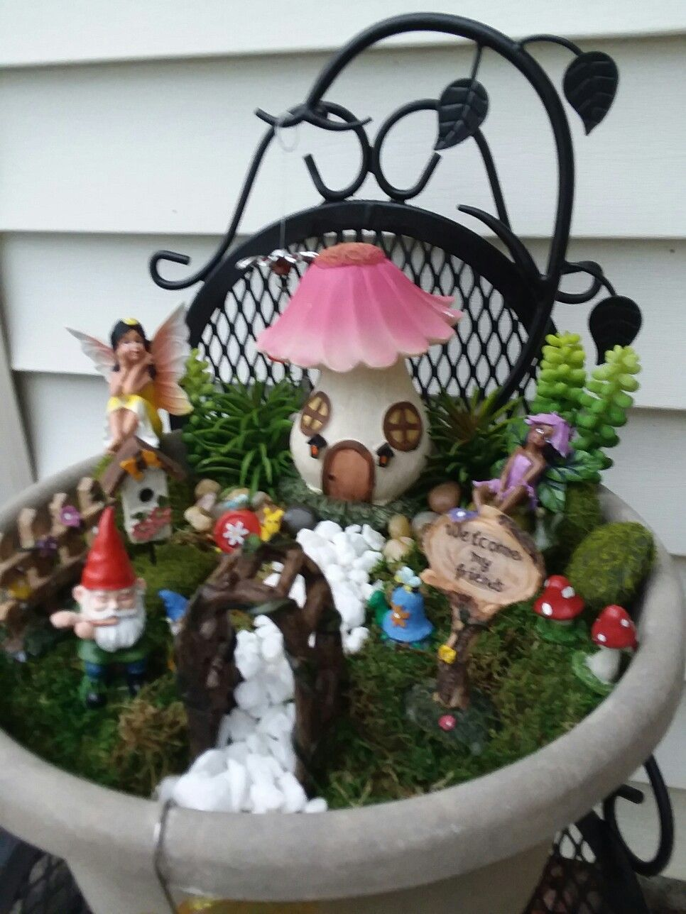 My Fairy Garden! An Inexpensive Kit Found At Family Dollar. Rocks From The  Dollar