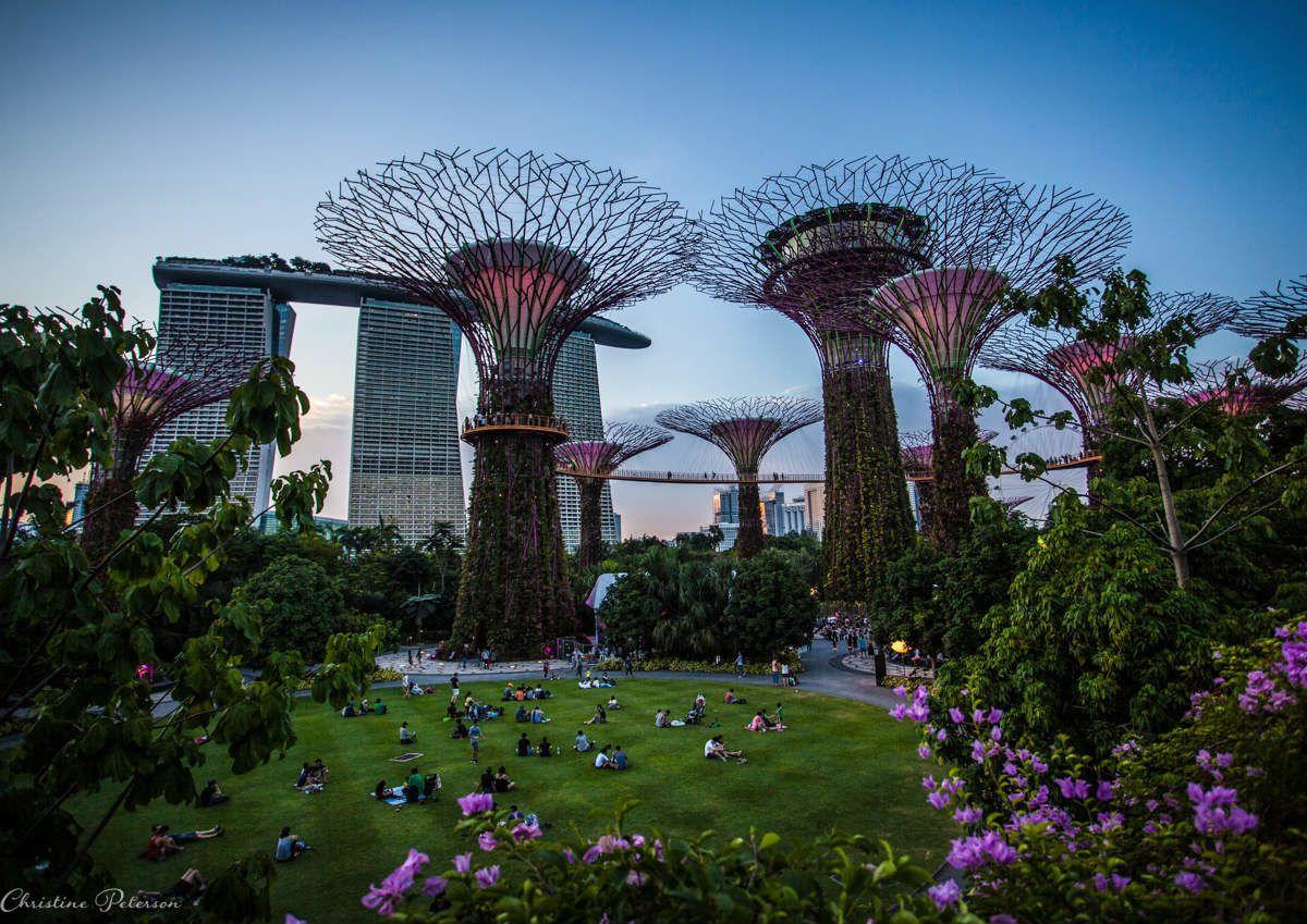 15 Perfect Instagram Shots Of Singapore Singapore Garden Urban