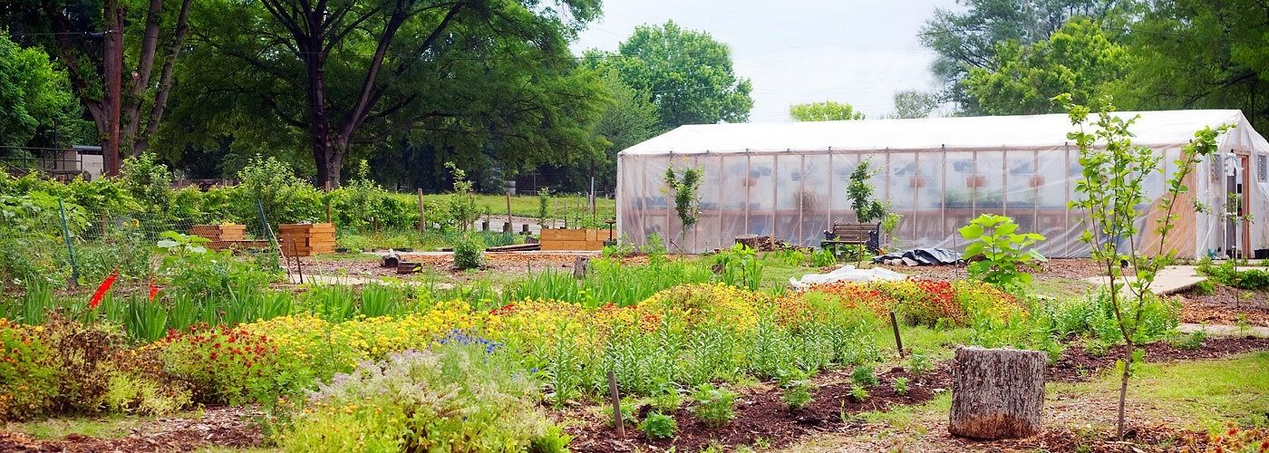 5 reasons small scale gardening could save the world for Small scale homesteading