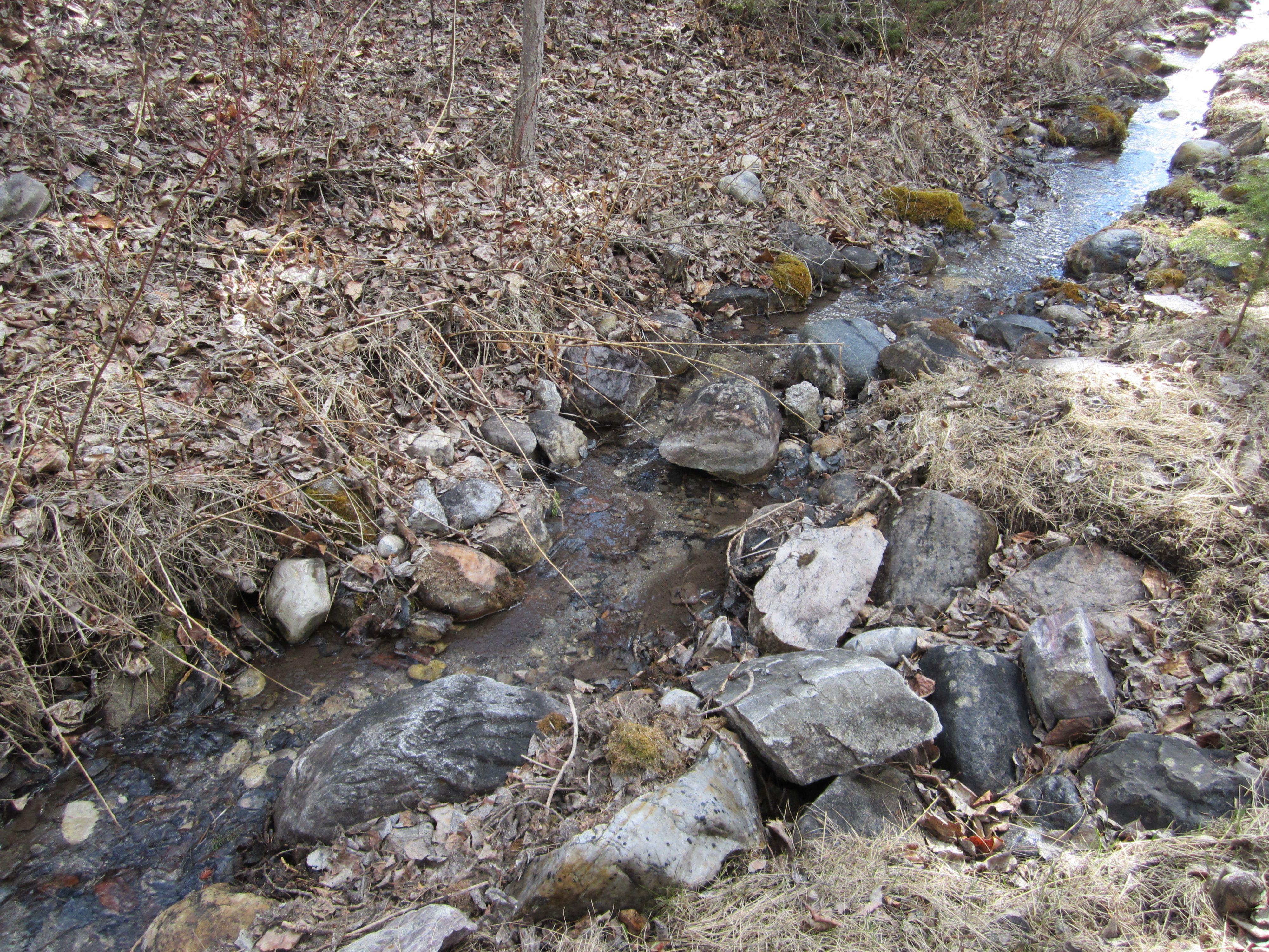 Small ground creek runs through property.