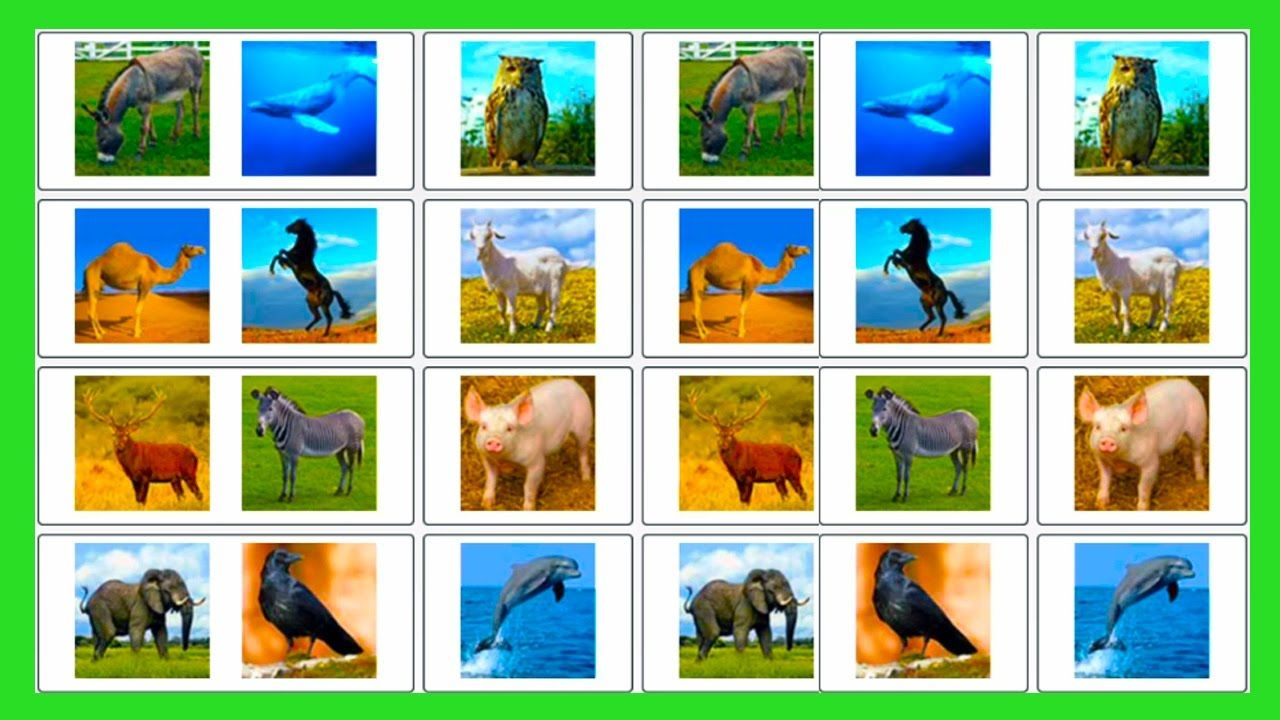 Learn Domestic Animals Sounds For Children Learning Wild Animals Sounds Learn Animals For Toddlers