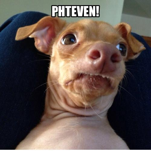 My Name Is Steven Dog Meme