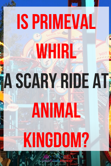 Primeval Whirl in Animal Kingdom: Everything You N