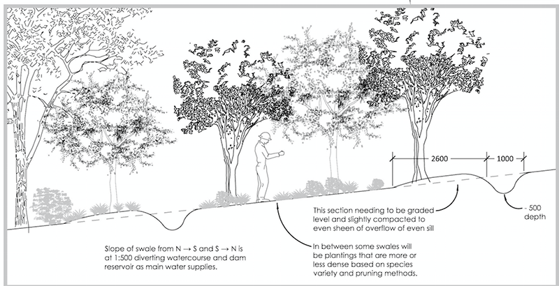 Pin by Heidi Robison on The Steadfast Home | Permaculture ...