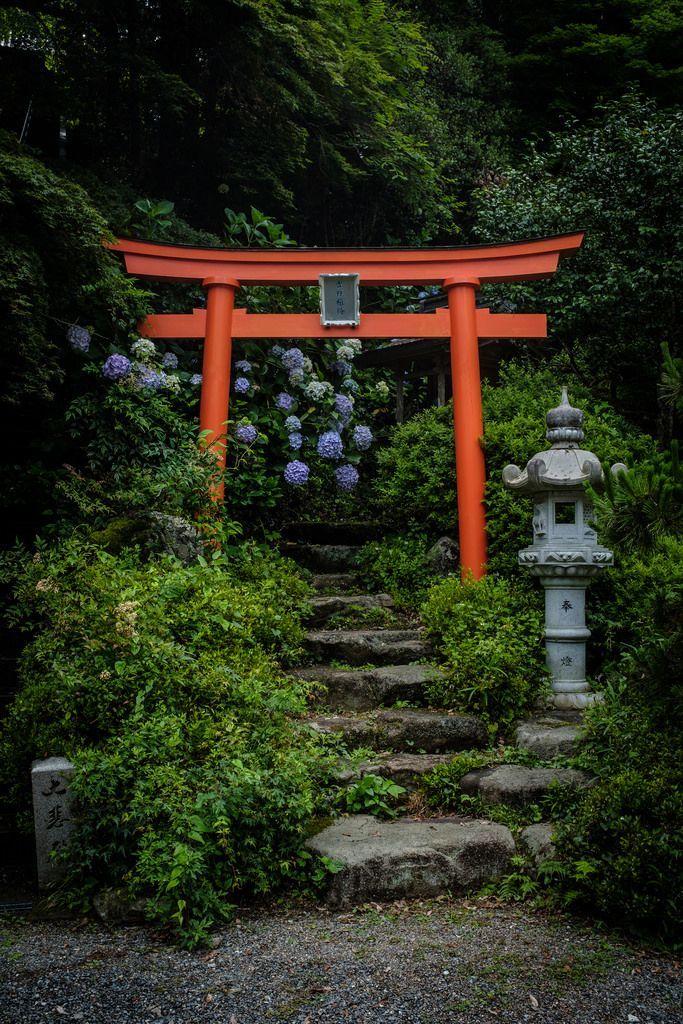 Photones Works 8959 Torii Japonais Jardin Japonais Jardin Zen