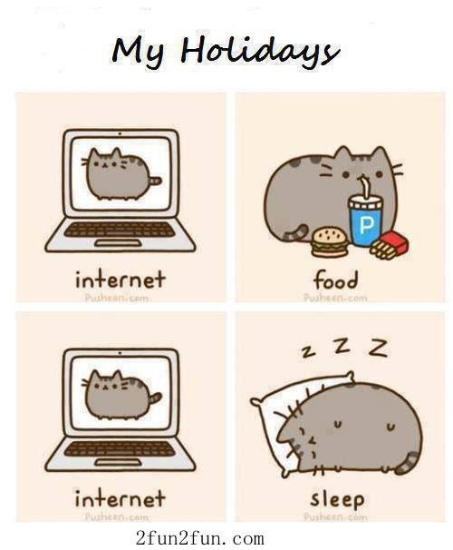 My Holidays Memes De Vacaciones Imagenes De Pusheen Imagenes Graciosas