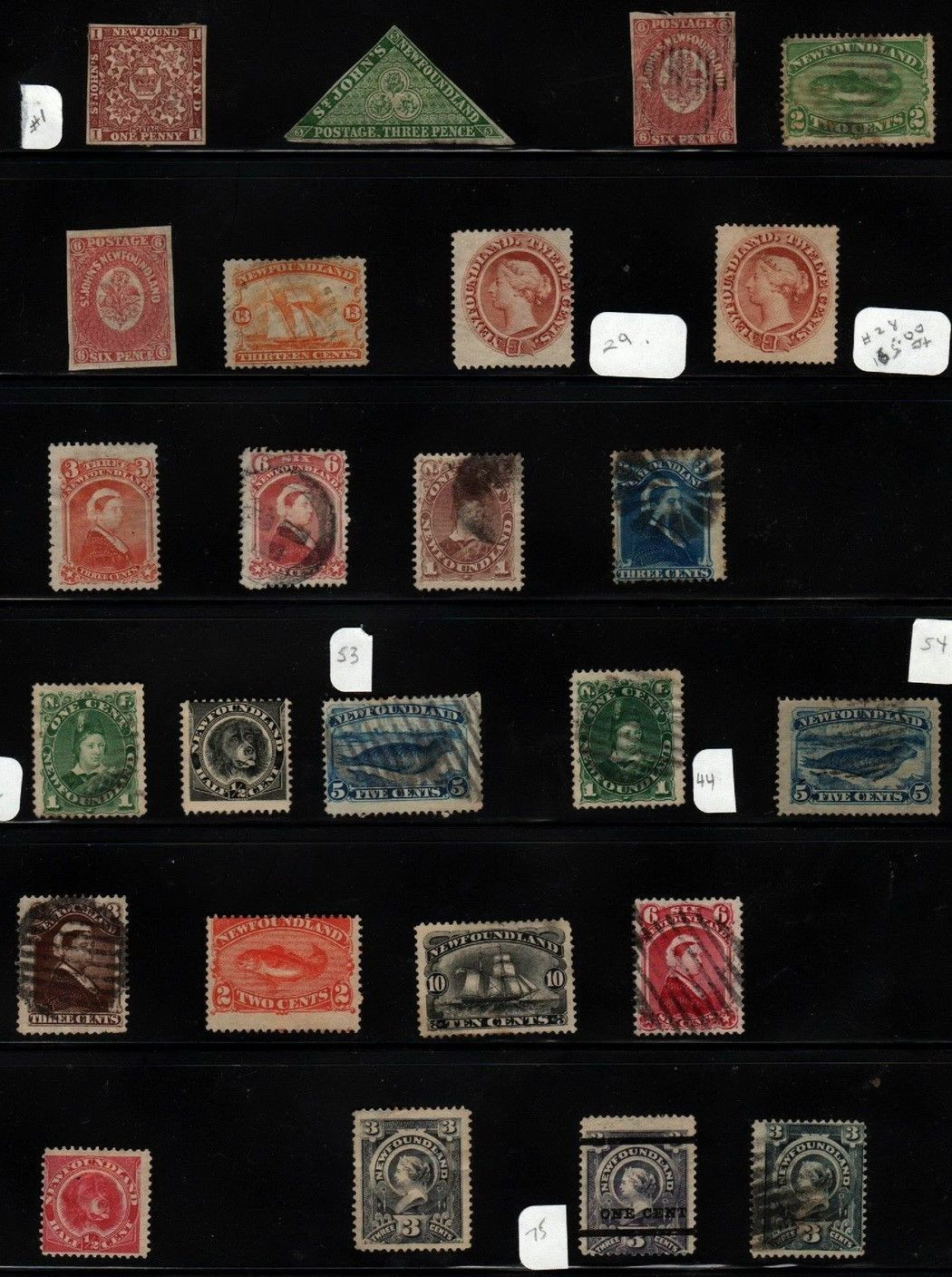 Newfoundland Collection from Strong Scott Vol I 1840-1940 Album VERY STRONG https://t.co/UQRpuskjyO https://t.co/u645w1V8Tf