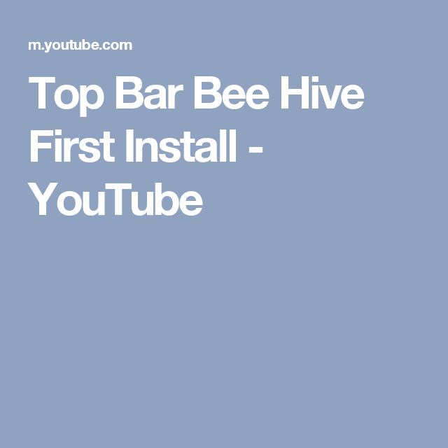 Top Bar Bee Hive First Install - YouTube