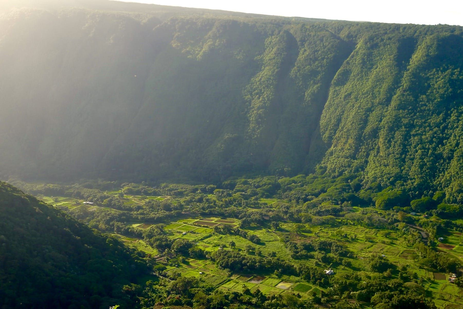 Photo of Waipi'o Valley (Big Island, Hawaii): How to Visit + Things to See and Do