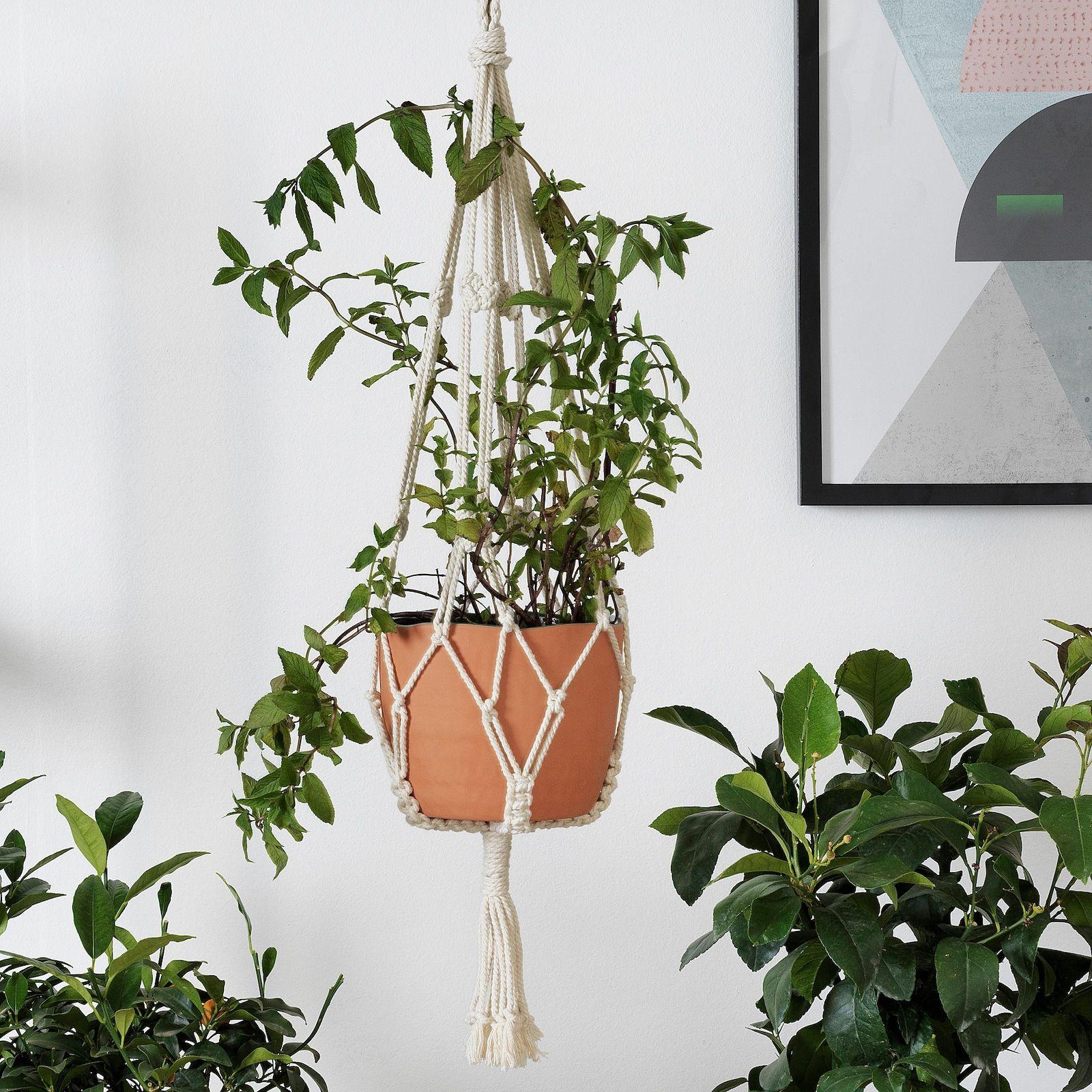 Botanisk Plant Pot Hanger Beige Handmade Ikea In 2020 Ikea Plant Hanger Pot Hanger Ikea Plants