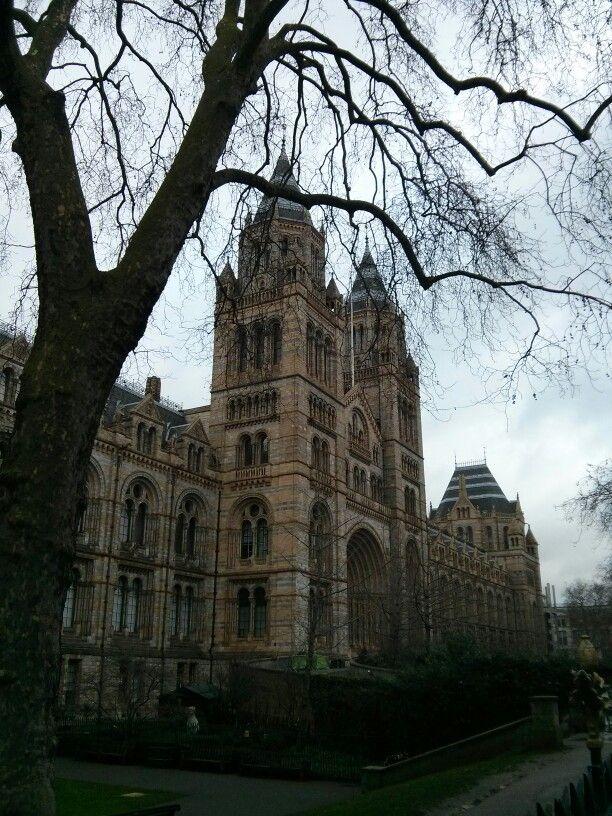Londres museo de ciencias naturales