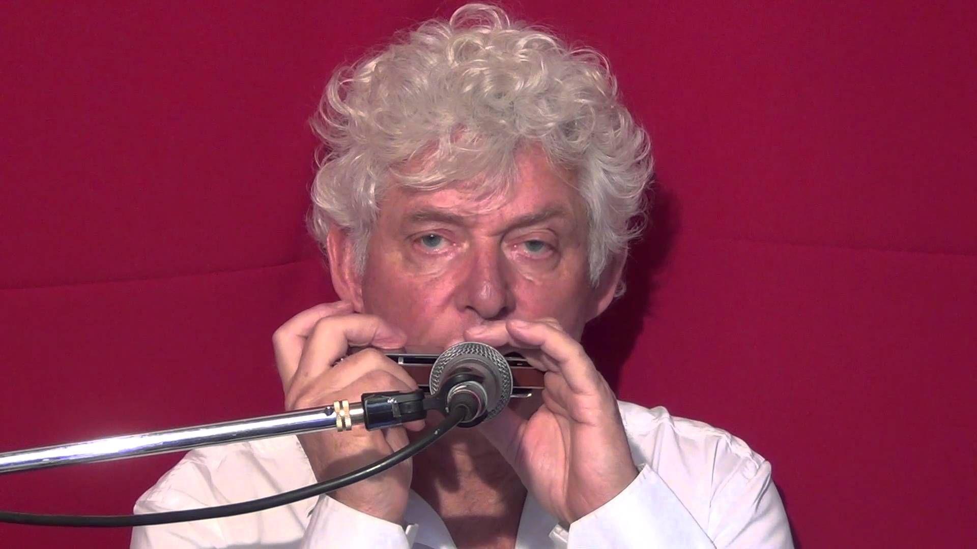 Tims Tiny Tunes #223 | Harmonica play-along lessons | Jazz harmonica lic...