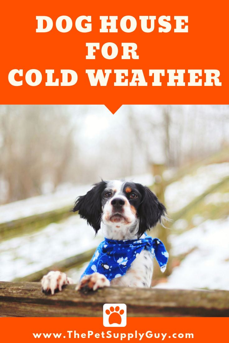 Dog House for Cold Weather Best Dog House for Winter (Buying Guide)