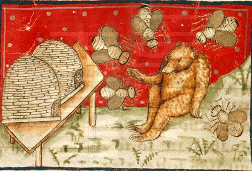 Bears and honey. BIG bees, or tiny bear... An image from medieval manuscript. (c)The British Library Board