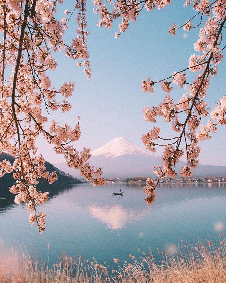 Mt Fuji Japan Japan Travel Travel Life Hacks Travel And Leisure